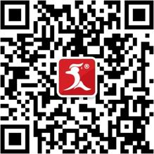关注597官方微信!